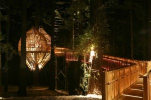 Treehouse-Restaurant-Architectural-The-Yellow-Exterior-Lighting